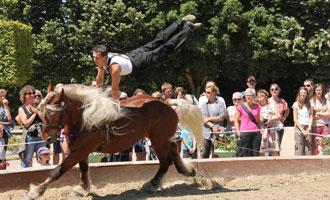 Rencontres equestres luneville 2018 programme
